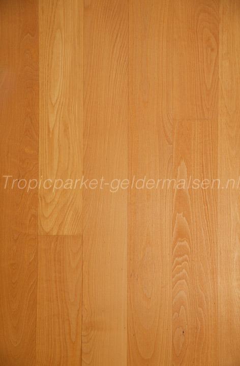 planken beuken